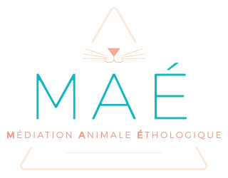 MAÉ Médiation Animale Ethologique
